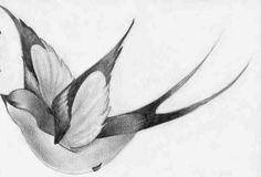"Tattoo designs for ""Swallow Lotus flower "" | Tattoodo.com"