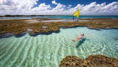 6 piscinas naturais do Nordeste que farão você se sentir no Caribe