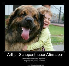 Arthur Schopenthauer Afirmaba quien es cruel con los animales,  no podra ser buena persona.