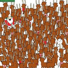 Can You Spot The Bear Among The Reindeer? The Perfect Christmas Puzzle For Office Procrastination Christmas Quiz, Christmas Puzzle, Hidden Images, Hidden Pictures, Puzzle Photo, Brain Teasers Riddles, Find Santa, Wheres Waldo, Picture Puzzles