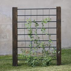 Coral Coast Guthrie 3-ft. Wood and Steel Trellis - T-16004