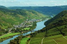 Mosel Valley, Germany