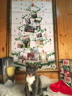 #christmasdecor #christmasgifts #ChristmasTree #tree #idea #home #pictures #winter #holiday #season #kitty #cat #catstagram