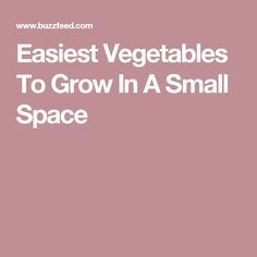 Easiest Vegetables To Grow In A Small Space