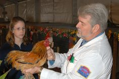 Poultry Shows & Judging | Kubota Agriplex | South Florida Fair