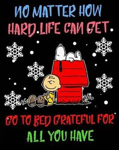 grateful for all you have! Snoopy And Charlie, Meu Amigo Charlie Brown, Charlie Brown Quotes, Charlie Brown And Snoopy, Snoopy And Woodstock, Charlie Brown Christmas Quotes, Snoopy Images, Snoopy Pictures, Funny Pictures