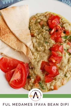 Ful Medames (Fava Bean Dip) is a warm, healthy dip mixing mashed fava beans, olive oil, cumin, garlic and lemon juice topped with parsley, diced tomatoes and a drizzle of extra virgin olive oil and served with pita bread. For extra spice try adding jalapeños, hot sauce or chili peppers. // acedarspoon.com #appetizer #mediterraneandiet #favabeans #fulmedames #lebanesefood Healthy Dips, Healthy Dinner Recipes, Breakfast Recipes, Crockpot Recipes, Chicken Recipes, Cooking Recipes, Grilled Seafood, Fava Beans, Bean Dip