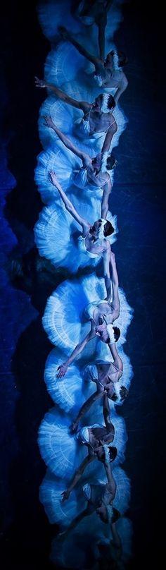 """""""Swan Lake"""", Mikhailovsky Ballet - Photographer Nikolay Krusser"""