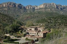 A shortage of grapes in the Spanish wine regions of Priorat and Mallorca has led to a surge in prices and is causing concern among some producers. Wine Images, Wine News, Spanish Wine, Barcelona, World's Most Beautiful, Photo Essay, Spain Travel, City Photo, Vineyard