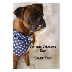 Veterans Day Boxer Greeting Card - animal gift ideas animals and pets diy customize
