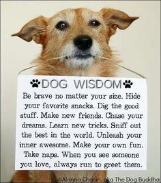 Awww so cute and so wise More