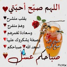 Good Morning Arabic, Good Morning Msg, Good Morning Photos, Morning Images, Beautiful Love Images, Beautiful Flowers Wallpapers, Morning Greetings Quotes, Morning Messages, Jumma Mubarik