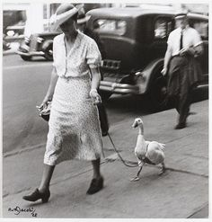Lotte Jacobi, Ruth Jacobi, Berlin, Jacobi walking a duck! Vintage Pictures, Old Pictures, Old Photos, Black White Photos, Black And White Photography, Tumblr Background, Funny Bird, Fotografia Social, Berlin Museum
