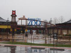 Kansas City Zoo (Kansas City, MO) where Elisabeth and I saw a Kimono Dragon!