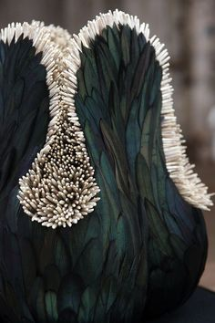 Bird Feather Sculpture by  Kate MccGwire