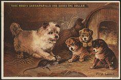 Take Hood's Sarsaparilla. First lesson.  Boston Public Library