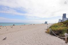 Vacation Rentals, Homes, Experiences & Places - Airbnb Condos In Florida, Florida Vacation, Miami Florida, Miami Beach, Vacation Rentals, Good House, More, Studio, Perfect Place