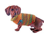 Autumn Dog Sweater. $36.00, via Etsy.