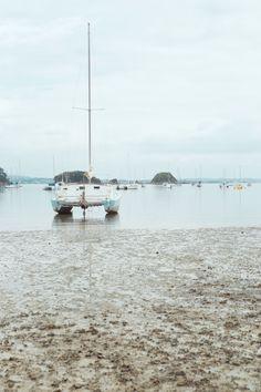 Waiheke Island, Trips, Beach, Blog, Viajes, The Beach, Traveling, Beaches, Blogging