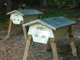 Blog about Beekeeping in Top-Bar Hives.  (Better way of beekeeping.)