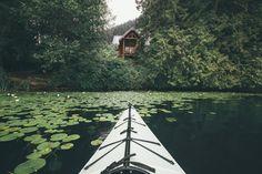 furstyphoto:   Cabin Hunting - Home is where my bookshelf sits.
