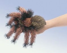Small Tarantula Puppet at theBIGzoo.com, a toy store with over 12,000 products.