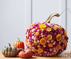 Add dried flowers to a faux pumpkin to create a pretty fall centerpiece.