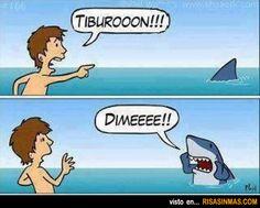 Tiburón educado.