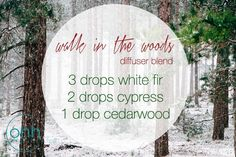 Walk in the Woods essential oil diffuser blend with White Fir, Cypress, and Cedarwood #christmas #holidays #winter