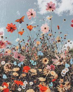 Blumen Bilder Spring Equinox hach so schön! The post Spring Equinox appeared first on Blumen ideen. Art Du Collage, Photo Wall Collage, Flower Collage, Flower Art, Spring Aesthetic, Flower Aesthetic, Aesthetic Painting, Aesthetic Collage, Aesthetic Drawing