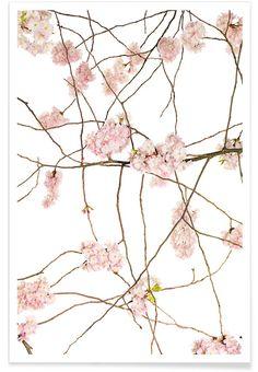 Flora - Japanische Kirsche als Premium poster door Tan Kadam | JUNIQE