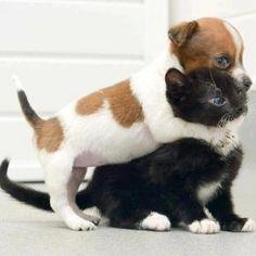 You mine!!!