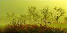 Atelier Stephanie Koehl - Feen-Nebel