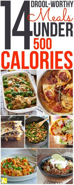 14 Drool-Worthy Meals Under 500 Calories - The Krazy Coupon Lady