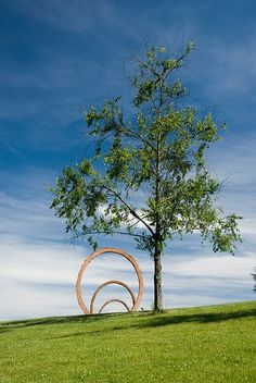 The Museum Park in summer   ©NCMA