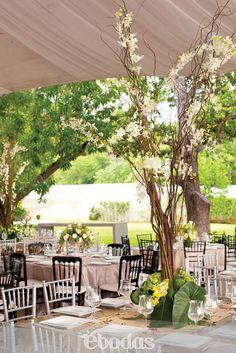 Arreglos florales en verde y blanco #WeddingIdeas#organic look #floraldesign centros de mesa de orquídeas de estilo orgánico presentes en la boda de Lina directora ebodas