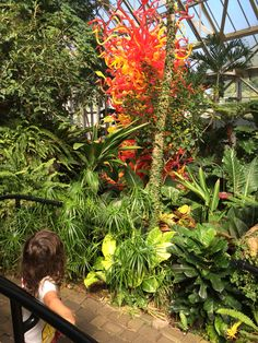 EO, Chihuly and Papillons @ Franklin Park Conservatory and Botanical Gardens