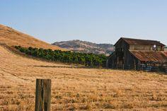 17 Best San Joaquin Valley images in 2013 | San joaquin