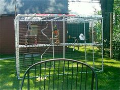 You can see 10 photos bird cage aviary to backyard : Bird Cage Aviary. Diy Parrot Toys, Diy Bird Toys, Parrot Pet, Parrot Bird, Diy Bird Cage, Bird Cages, Bird Feeders, Cockatoo Toys, Macaw Cage
