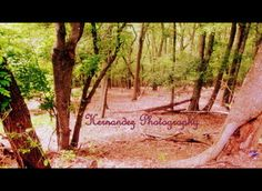 Photography by Hernandez Photography. Based out of Lockhart, Texas.