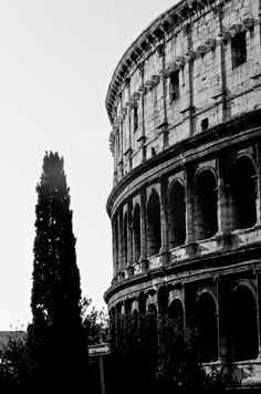 Taken while on our trip to France and Italy - The Colosseum