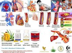 Forever Cardio-Health supplement provides maximum potency to keep your cardiovascular health andmaintain healthy blood pressure and cholesterol level. Forever Living Aloe Vera, Forever Aloe, Aloe Barbadensis Miller, Aloe Drink, Aleo Vera, Forever Living Business, Healthy Cholesterol Levels, Healthy Blood Pressure, Forever Living Products