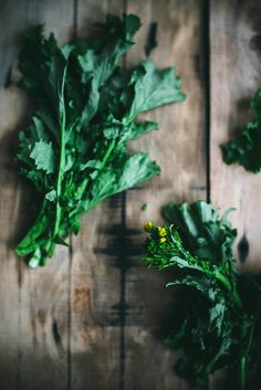 rapini for pizza by Beth Kirby | {local milk}