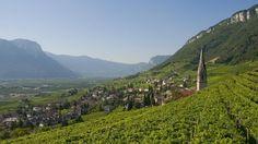 Südtirol: Bis zum Mittagessen gibt es hier nur Weißwein Tramin in Südtirol. (Quelle: imago)