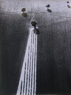 Fotografia originale in bianco e nero timbrata, titolata e firmata a penna al verso (Storie di terra, dal 1980 ad oggi. Mario Giacomelli, Via Mastai 24, 60019 Senigallia, An)