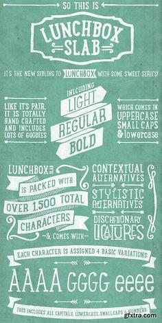 LunchBox Slab Font Family - 4 Fonts $100