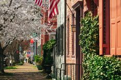 Learn more about the real Green Family from PBS' Mercy Street at Alexandria, Virginia sites, tours and other experiences. Alexandria Virginia, Old Town Alexandria, Mercy Street, Mount Vernon, Public Art, Installation Art, Washington Dc, Tours, Explore