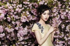 fundo de plantas - Kwak Ji Young for Phuong My Spring Summer 2014