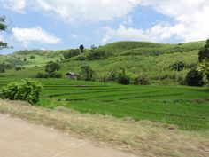 Rice fields and mountains on the way to Canlaon City in the Central Visayas in The Philippines. #travel #asia http://merevin.com/on-the-road-to-canlaon/