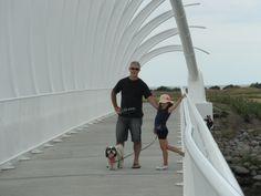 Te Rewa Rewa Bridge in Fitzroy, New Plymouth.